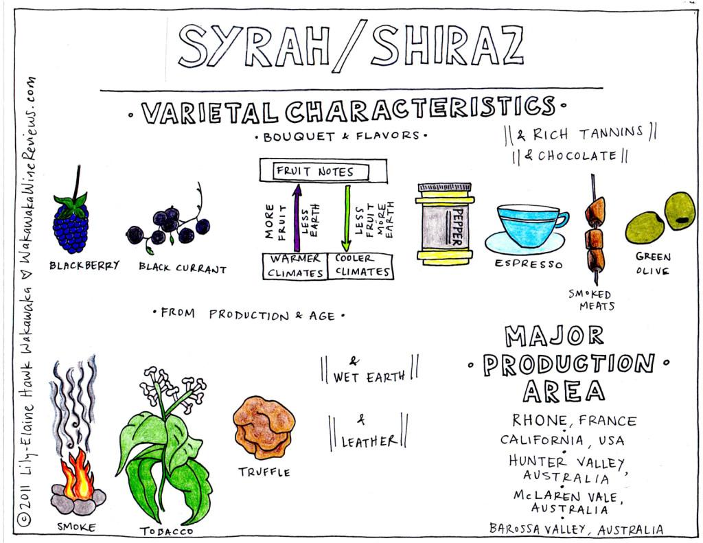 syrah-shiraz