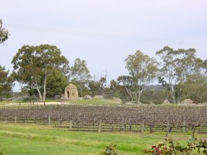 Clare_Valley,_Sevenhill_Cellars_-_panoramio_-_Frans-Banja_Mulder